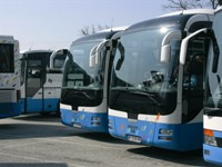 bus transfers by coach and minibus